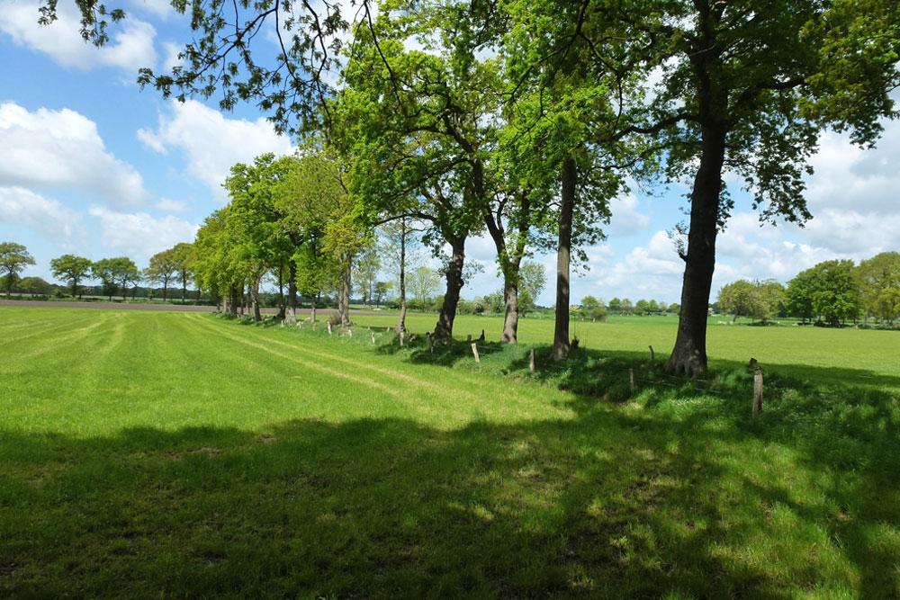 Foto zeigt Landschaftsaufnahme einer norddeutschen Wiesen/Ackerlandschaft | Stadt- und Landschaftsplanung